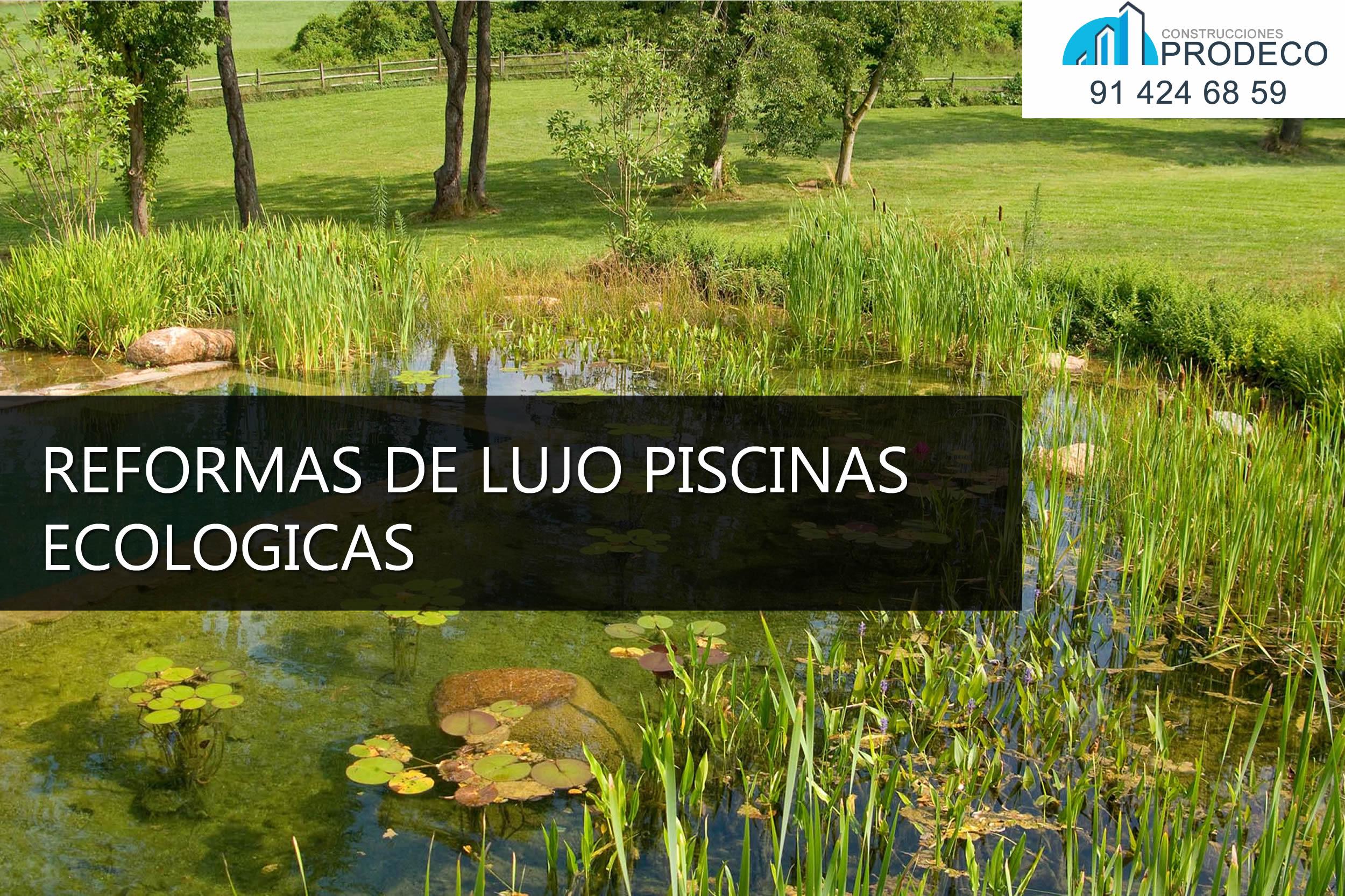 reformas y prodeco reformas de lujo piscinas ecologicas